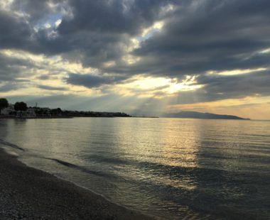 Αλκυώνη